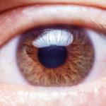 遠視とは、目のレンズになる役割の部分が厚くなることでピントが合うこと言います。 遠視の場合、近くでも遠くでも調節が必要になるので、どちらもよく見えなくなります。